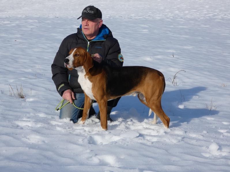 Månadens hund mars